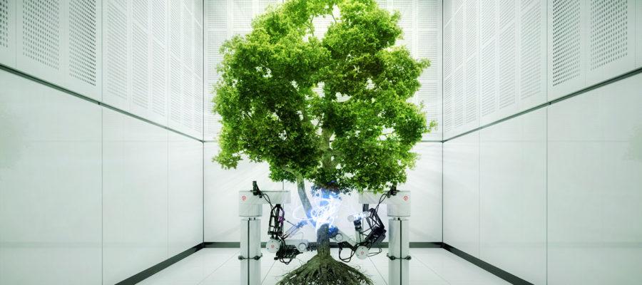 Стартап-проекты посвященные экологической тематике все чаще достигают успеха и привлекают внимание как венчурных инвесторов, так и потребителей со всего мира.