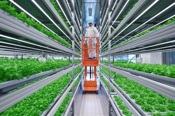 В технологии «умных ферм» активно инвестируют венчурные фонды. Так, российский аграрный стартап Fermata в общей сложности привлек более 5.000.000$ инвестиций.